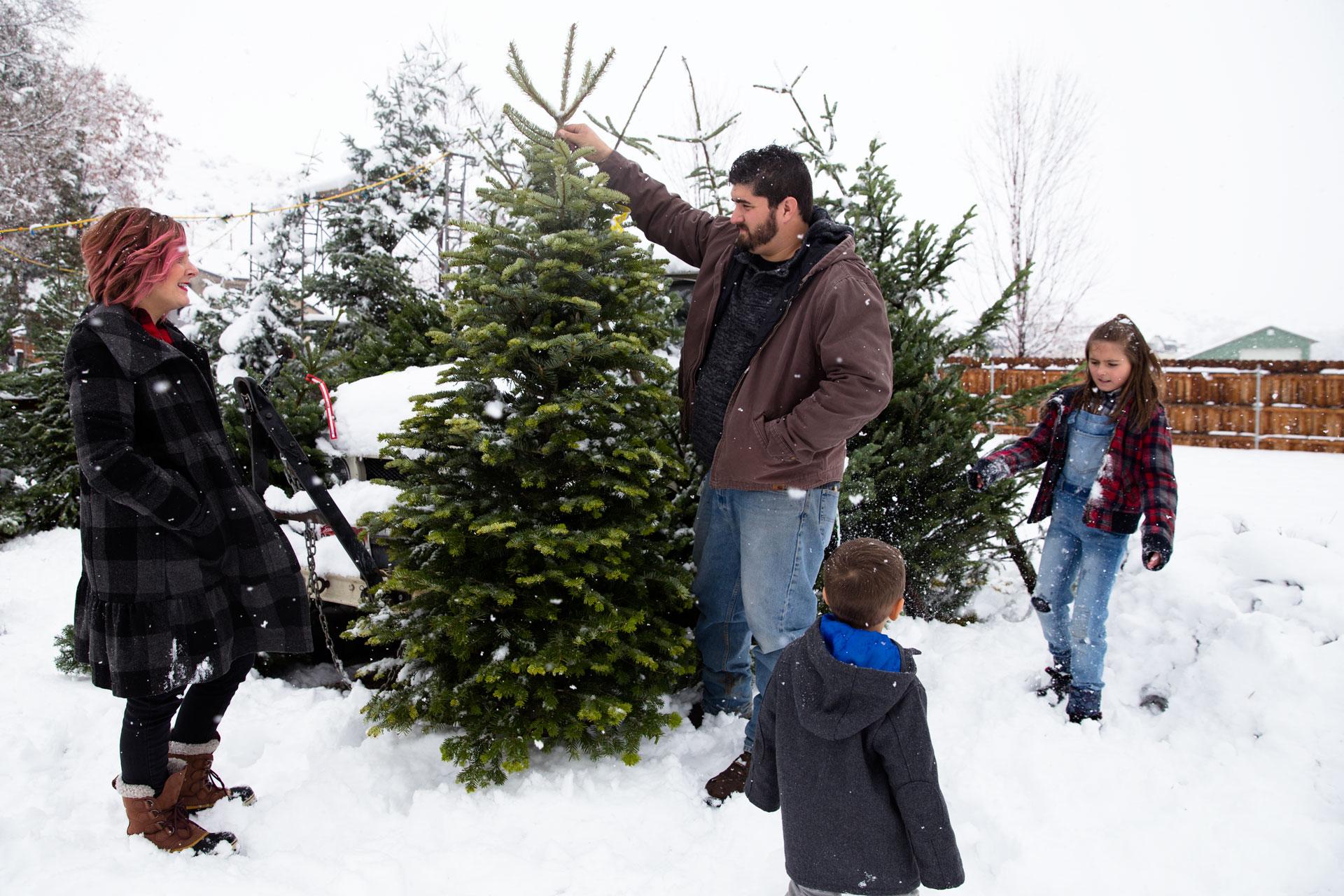 Dan holding up Christmas Tree for all to see at the tree lot