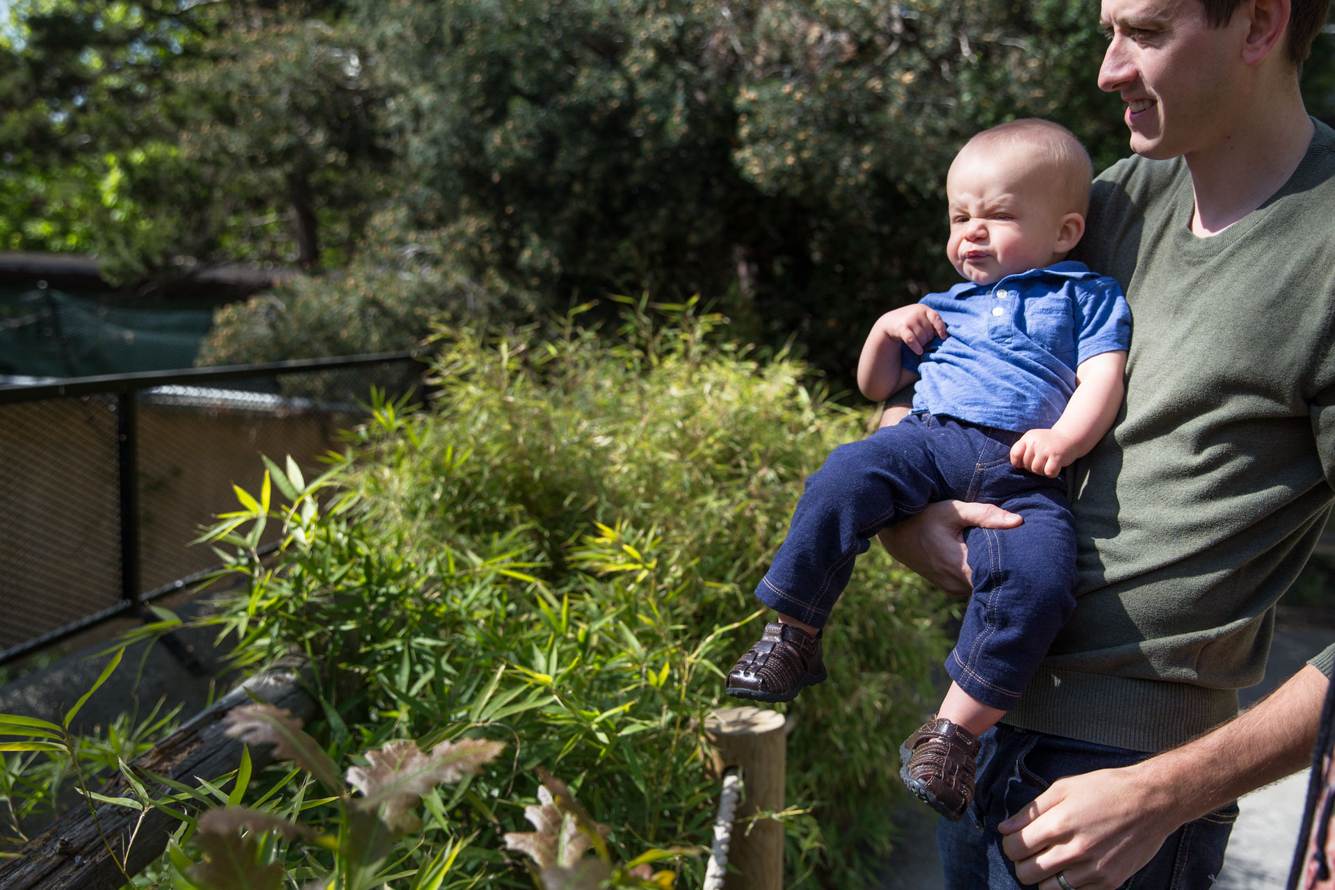 Dad holding toddler son as he had a scrunched up face and looking at animals at the zoo