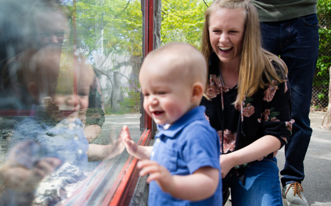 Mom looking down at son while smiling and he is looking at the animal behind the glass at the zoo