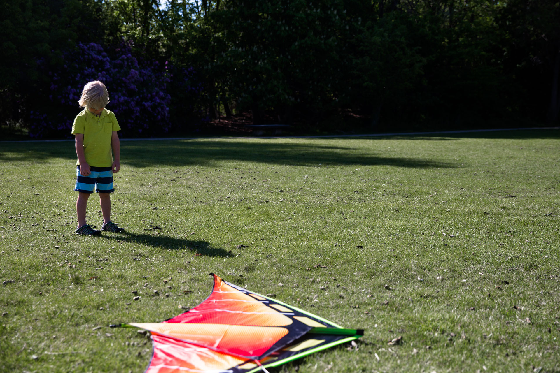 Little boy looking sad as kite is laying on the ground in front of him