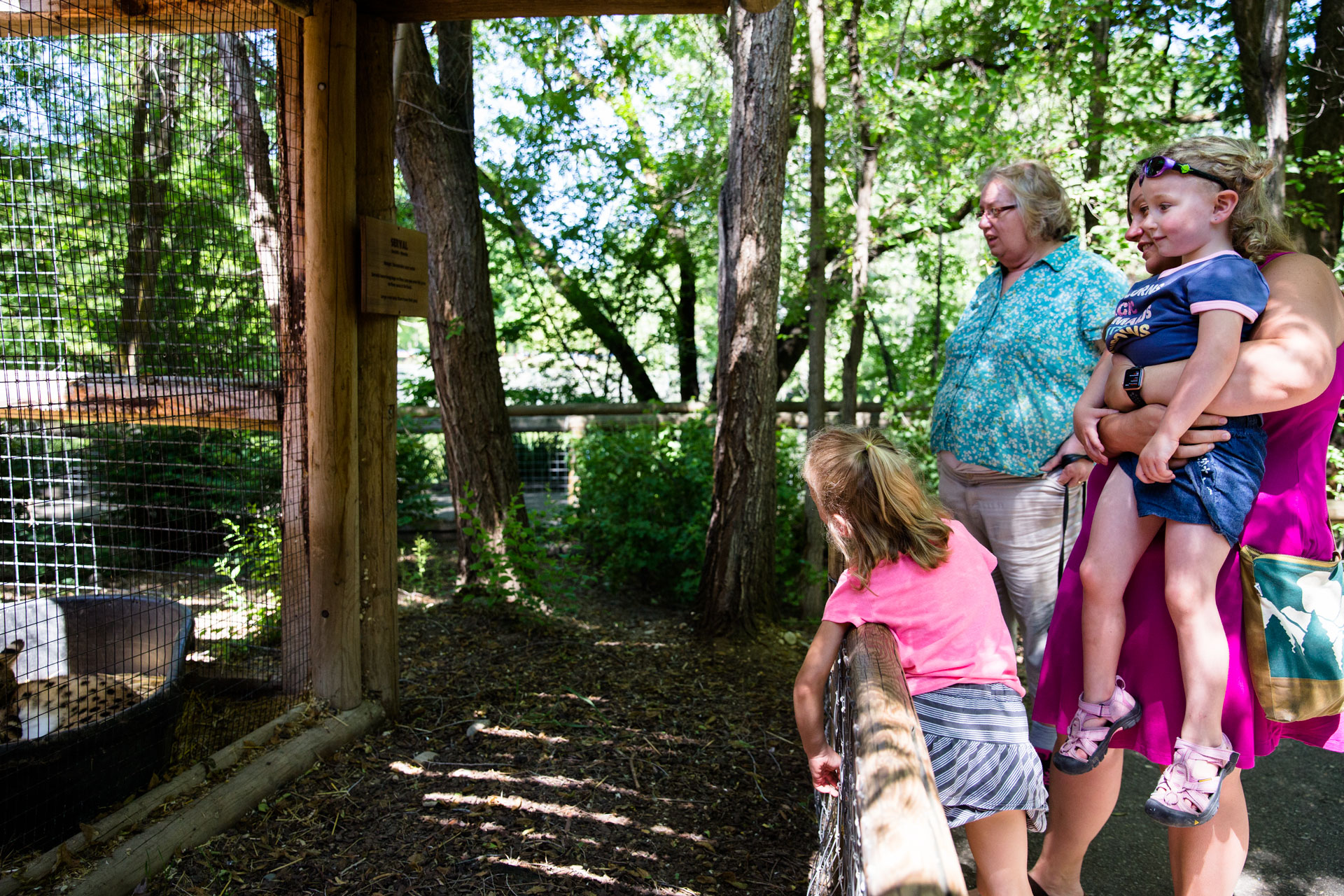 small family looking at the zoo exhibit with grandma from behind the fence