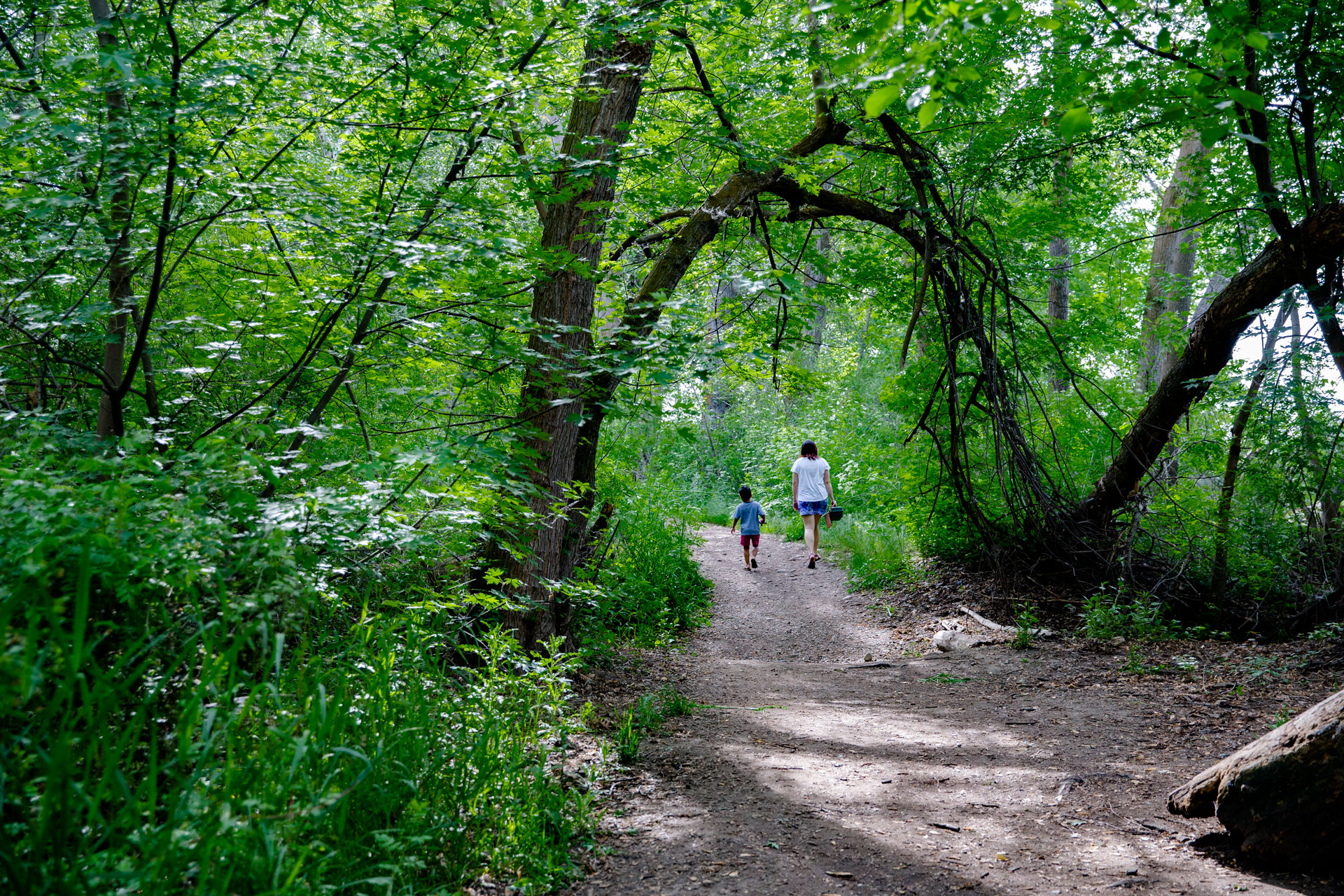 Mom and son walking with fishing gear down at the path lines with green trees overhanging path