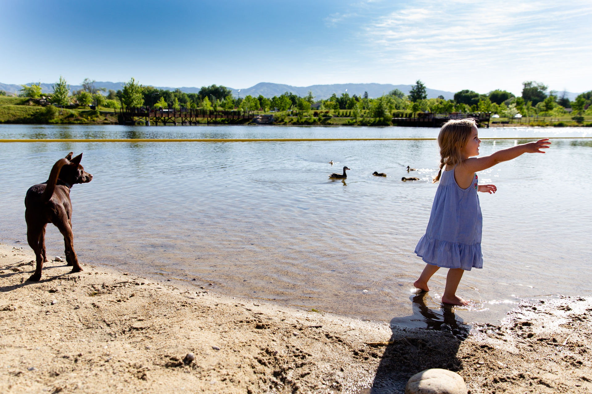 Little girl and dog standing next to the lake looking at the ducks